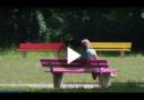 Augsburg: Streit um bunte Parkbänke