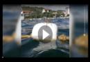 Kroatien: Riesen-Spinne verursacht bei Urlaubern Panik
