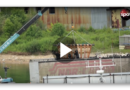 """Russland: Drei weitere Orcas aus """"Wal-Gefängnis"""" befreit"""