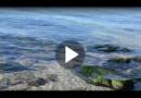 Im Urlaub: Ist es umweltschädlich, ins Meer zu pinkeln?