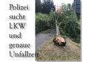 Unfallflucht: Umgestürzter Baum kracht auf Baumarktzaun