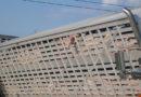 4500 Euro Strafe nach PETA-Anzeige: Fahrer eines Tiertransporters für Unfall verurteilt / 24 Schweine wurden getötet