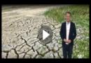Schockkarte: So extrem ist die Dürre in Deutschland tatsächlich!