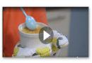 Crème Brûlée mit Ziegenkäse