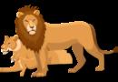 Asiatisches Löwenmädchen im Frankfurter Zoo getötet: PETA kritisiert verantwortungslose Zucht scharf / Tierschutzorganisation forderte Zoodirektion bereits 2017 auf, Nachzuchten zu unterbinden
