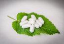 Nebenwirkungen an Arzt oder Apotheker berichten