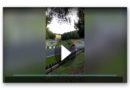 Im Video: Motorrad-Profi überlebt Horror-Sturz bei 177 km/h