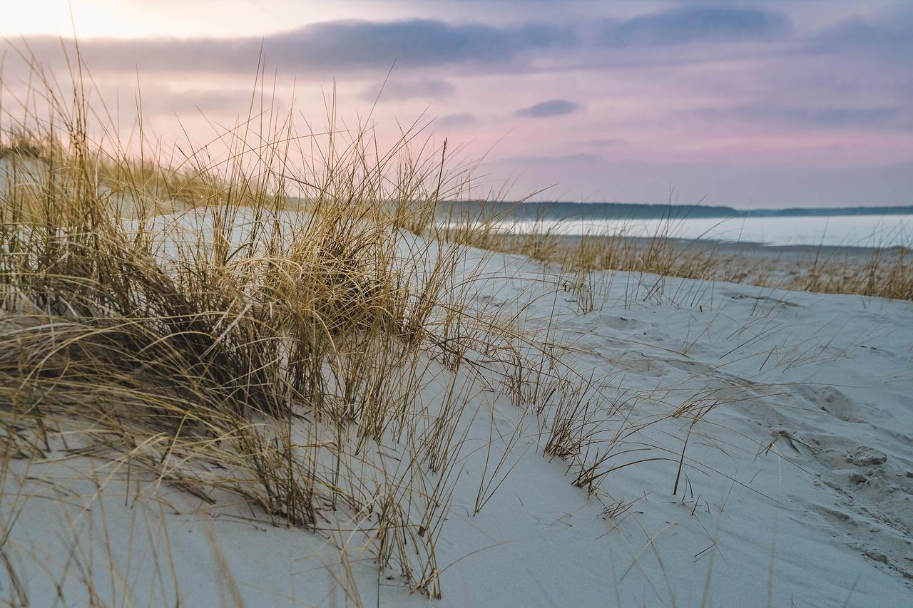 Genossenschaftlich für den Ostseeschutz