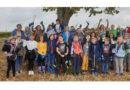 Gesamtschule Immenhausen: Projekttage zum Klimaschutz motivierten die Schüler