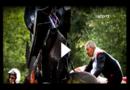 Formel 2: Tödlicher Unfall bei Rennen in Spa – Anthoine Hubert stirbt bei Crash