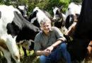 Aus Mist wird Strom: Grüne Energie vom Bauernhof
