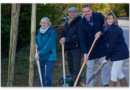 Baumstark für Hessen: Zehn Bäume für Kassel