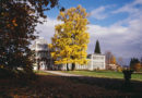 Saisonbeginn im Gewächshaus im Bergpark am 1. November