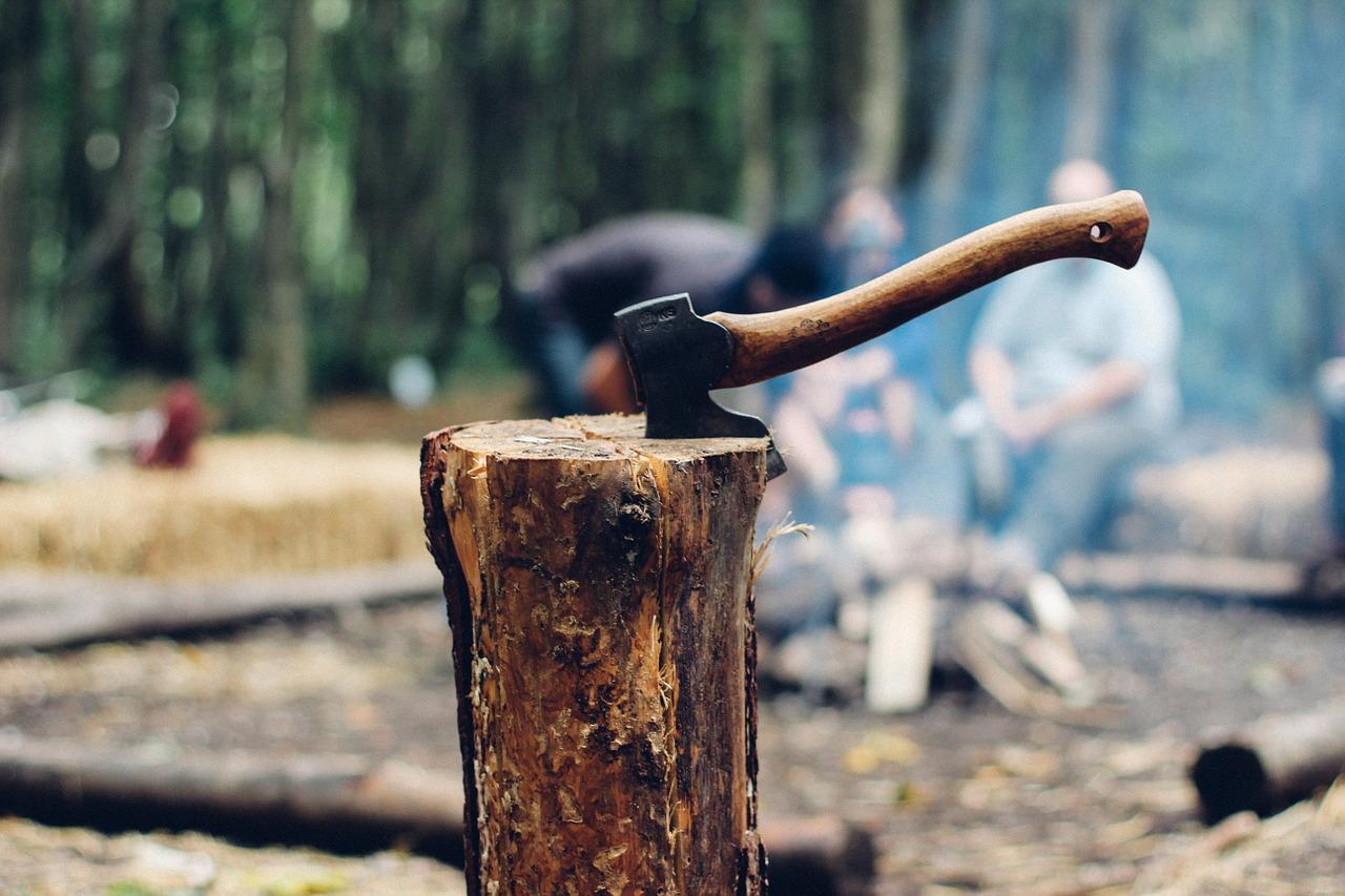 Abgabe von Brennholz aus dem Stadtwald der Hansestadt Warburg