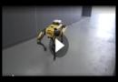 Wird Robocop Realität? US-Polizei testet Roboterhund Spot