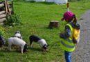 Aufwachsen mit tierischer Begleitung – Kinder profitieren von Tieren in der Kita