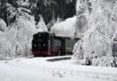 Bimmelbahn & Lichterglanz – im Weihnachtsland Erzgebirge entsteht der erste befahrbare Weihnachtsmarkt