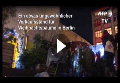 Endlich gibt es sie, die Öko-Tannenbäume. Tolle Idee aus Berlin