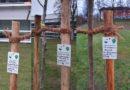 Baumpflanzaktion durch Umweltaktivisten