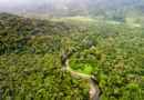 Wälder und Felder am Limit
