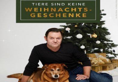 """Neues Video: Schauspieler Jürgen Tonkel appelliert an alle Tierfreunde: """"Tiere sind keine Weihnachtsgeschenke"""""""