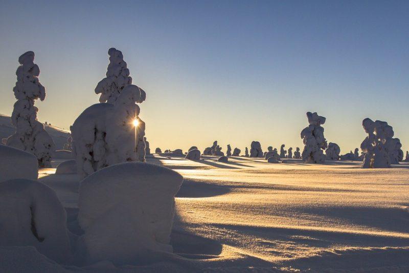 Pixum startet großen Online-Adventskalender und verlost Traumreise nach Schwedisch Lappland