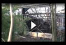 Zoo-Brand in Krefeld: Polizei benennt mögliche Brandursache