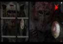 Tübinger Hirnforscher Nikos Logothetis führt umstrittene Affenversuche in China weiter
