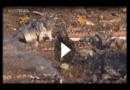 Flugzeugabsturz mit 176 Toten: Iran gesteht Schuld ein