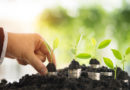 forsa-Studie: Investmentverhalten der Deutschen bei grünen Anlagen. Was zieht mehr – Rendite oder Klimaschutz?