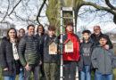 Park Schönfeld und Botanischer Garten erhalten Nisthilfen für Wildbienen