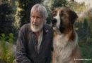 Kino-Neustarts der Woche: Diese Filme solltet ihr nicht verpassen