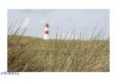 Deutsche Küste dicht: Touristen-Verbot auf Nord- und Ostsee-Inseln