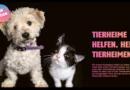Aktion #MeinTierheimtier