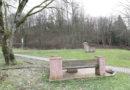 Waldhof in Helsa blüht endlich auf: GENAU schafft artenreiches Paradies für Mensch und Tier