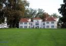Kassel wird Grünflächen künftig verstärkt extensiv bewirtschaften