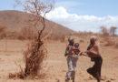 Doppelte Plage: Corona-Krise bremst Kampf gegen Heuschrecken in Afrika aus