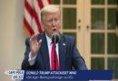 Unfehlbarkeit: Donald Trump attackiert WHO