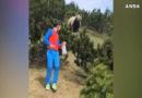 Alessandro bleibt cool: 12-Jähriger trifft in Italien auf Braunbären