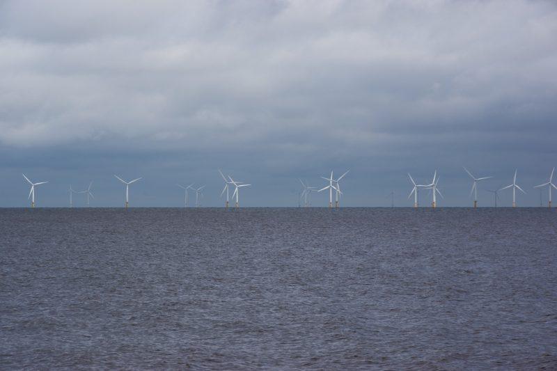 Naturverträglichkeit der Energiewende auf See nicht per Schnellschuss aufs Spiel setzen