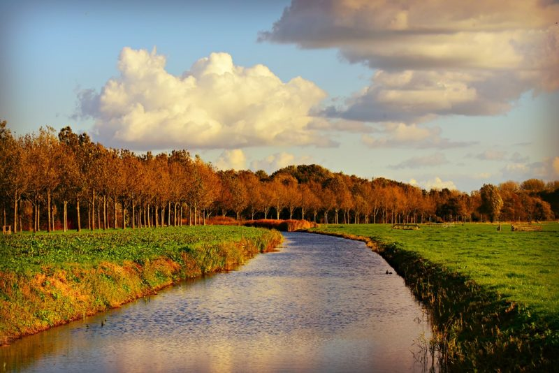NABU-Studie: Zukunftspotenziale für naturnahe Wasserstraßen jetzt nutzen!